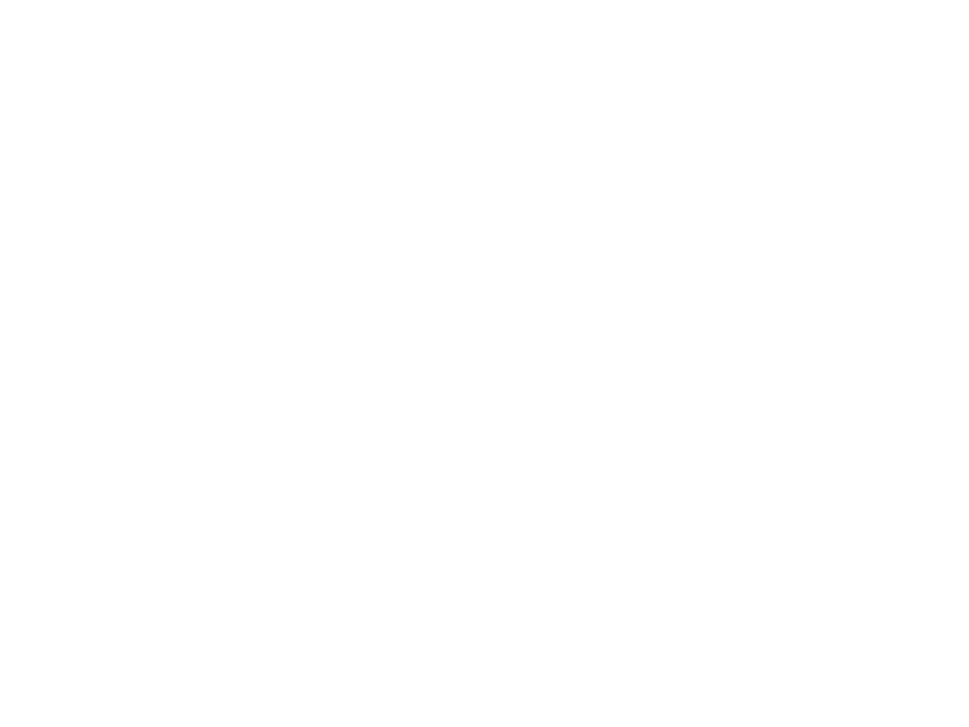 Lot 5034